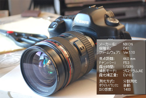 20081206-072642.jpg
