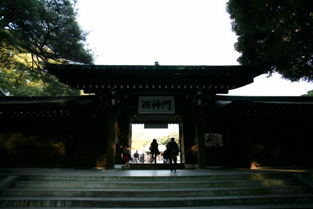 20090110-150050.JPG