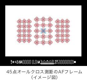 45pointx9.jpg