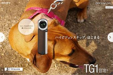 TG1.jpg