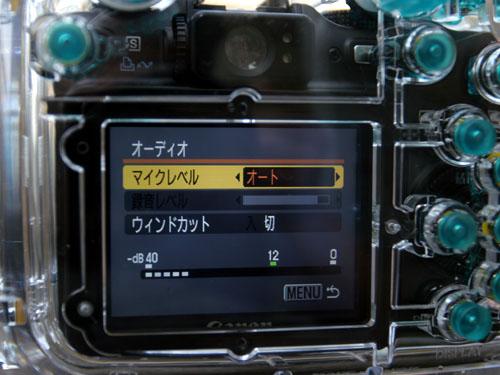 wpdc11_05.jpg