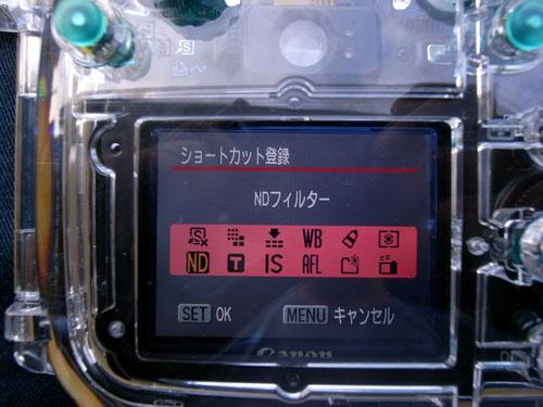 wpdc11_17.jpg